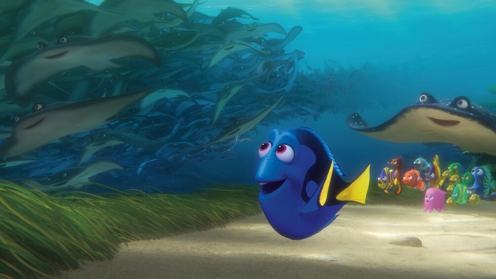 """Link zu Station 9) Eine """"Dorie"""" im eigenen Aquarium?"""